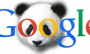 Getting Your Website Back On Track After Google Panda Penalize It